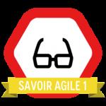 Savoir Agile 1